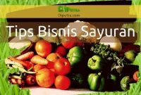 Cara Bisnis Sayuran